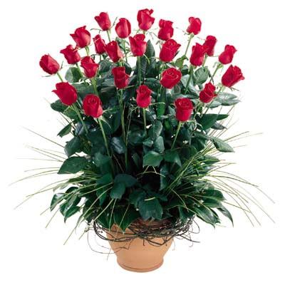 Bilecik çiçekçi uluslararası çiçek gönderme  10 adet kirmizi gül cam yada mika vazo