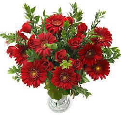 5 adet kirmizi gül 5 adet gerbera aranjmani  Bilecik çiçekçi hediye çiçek yolla