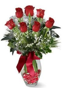 Bilecik çiçekçi internetten çiçek siparişi  7 adet kirmizi gül cam vazo yada mika vazoda
