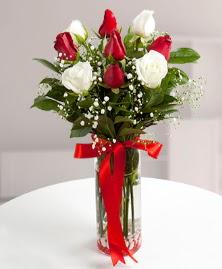 5 kırmızı 4 beyaz gül vazoda  Bilecik çiçekçi cicekciler , cicek siparisi