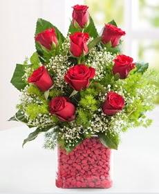 Cam içerisinde 9 adet kırmızı gül  Bilecik çiçekçi internetten çiçek satışı