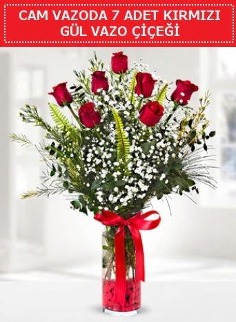 Cam vazoda 7 adet kırmızı gül çiçeği  Bilecik çiçekçi çiçek gönderme sitemiz güvenlidir