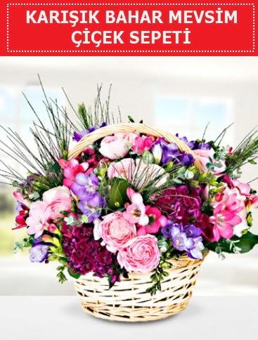 Karışık mevsim bahar çiçekleri  Bilecik çiçekçi ucuz çiçek gönder