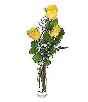 Bilecik çiçekçi internetten çiçek siparişi  3 adet kalite cam yada mika vazo gül