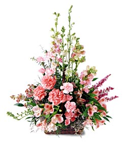 Bilecik çiçekçi ucuz çiçek gönder  mevsim çiçeklerinden özel