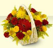 Bilecik çiçekçi 14 şubat sevgililer günü çiçek  sepette mevsim çiçekleri