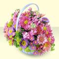 Bilecik çiçekçi yurtiçi ve yurtdışı çiçek siparişi  bir sepet dolusu kir çiçegi  Bilecik çiçekçi çiçek gönderme sitemiz güvenlidir