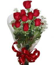 9 adet kaliteli kirmizi gül   Bilecik çiçekçi online çiçekçi , çiçek siparişi