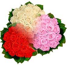 3 renkte gül seven sever   Bilecik çiçekçi çiçek , çiçekçi , çiçekçilik