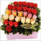 15 adet renkli gül ve cam   Bilecik çiçekçi çiçekçi mağazası