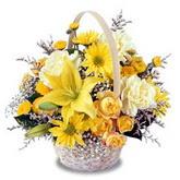 sadece sari çiçek sepeti   Bilecik çiçekçi çiçek gönderme sitemiz güvenlidir