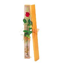ince  kutuda  1  gül   Bilecik çiçekçi çiçek yolla