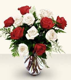 Bilecik çiçekçi uluslararası çiçek gönderme  6 adet kirmizi 6 adet beyaz gül cam içerisinde