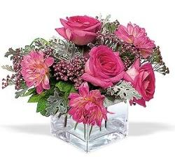 Bilecik çiçekçi cicekciler , cicek siparisi  cam içerisinde 5 gül 7 gerbera çiçegi