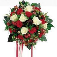 Bilecik çiçekçi ucuz çiçek gönder  6 adet kirmizi 6 adet beyaz ve kir çiçekleri buket
