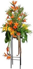 Bilecik çiçekçi çiçek siparişi sitesi  perförje tanzimi dügün nikah ve açilislara