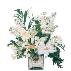 Bilecik çiçekçi internetten çiçek siparişi  sadece beyazlardan olusmus mevsim cam yada mika tanzim