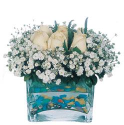 Bilecik çiçekçi çiçekçi mağazası  mika yada cam içerisinde 7 adet beyaz gül