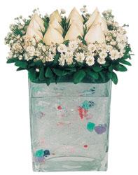 Bilecik çiçekçi çiçekçi mağazası  7 adet beyaz gül cam yada mika vazo tanzim