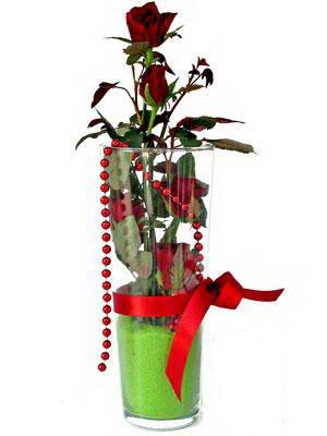 Bilecik çiçekçi online çiçek gönderme sipariş  Cam yada mika içerisinde 9 adet kirmizi gül - sevdiklerinize özel