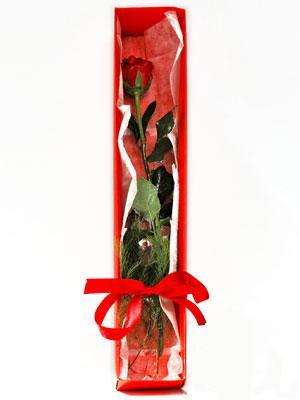 Bilecik çiçekçi yurtiçi ve yurtdışı çiçek siparişi  1 adet kutuda gül