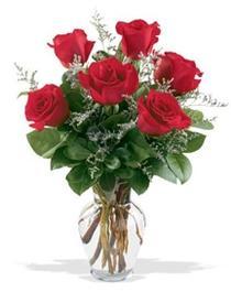 Bilecik çiçekçi çiçek gönderme sitemiz güvenlidir  7 adet kirmizi gül cam yada mika vazoda sevenlere