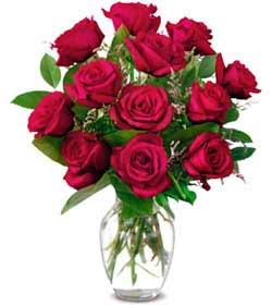 Bilecik çiçekçi online çiçek gönderme sipariş  1 düzine kirmizi gül sevenlere özel vazo gülleri