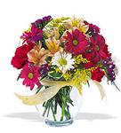 Bilecik çiçekçi çiçek , çiçekçi , çiçekçilik  cam yada mika vazo içerisinde karisik kir çiçekleri