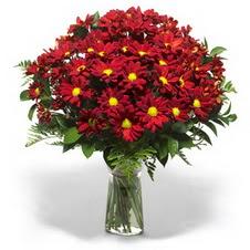 Bilecik çiçekçi çiçek yolla  Kir çiçekleri cam yada mika vazo içinde