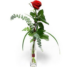 Bilecik çiçekçi 14 şubat sevgililer günü çiçek  Sana deger veriyorum bir adet gül cam yada mika vazoda