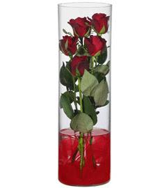 cam içerisinde 7 adet kirmizi gül  Bilecik çiçekçi çiçekçiler