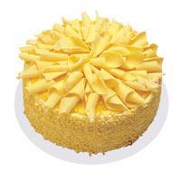 Muzlu pasta 4 ile 6 kisilik yas pasta  Bilecik çiçekçi çiçekçi telefonları