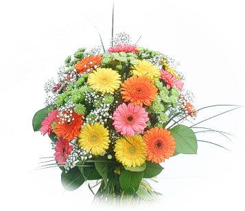13 adet gerbera çiçegi buketi  Bilecik çiçekçi online çiçek gönderme sipariş