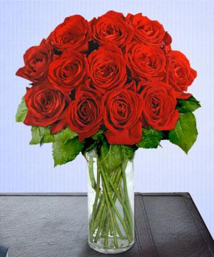 Anneme 12 adet cam içerisinde kirmizi gül  Bilecik çiçekçi çiçek siparişi sitesi