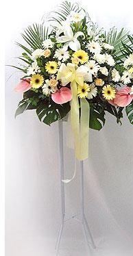 Bilecik çiçekçi online çiçek gönderme sipariş   perförje çiçegi dügün çiçekleri
