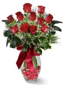 9 adet gül  Bilecik çiçekçi internetten çiçek satışı  kirmizi gül