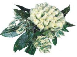 Bilecik çiçekçi internetten çiçek siparişi  9 Beyaz gül Özel kisiler için