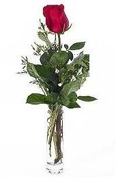 Vazo içerisinde 1 adet kirmizi gül  Bilecik çiçekçi cicekciler , cicek siparisi
