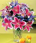 Bilecik çiçekçi çiçek mağazası , çiçekçi adresleri  Sevgi bahçesi Özel  bir tercih