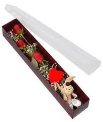 kutu içerisinde 3 adet gül ve oyuncak  Bilecik çiçekçi cicekciler , cicek siparisi