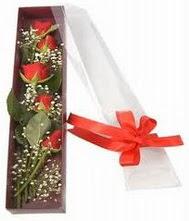 kutu içinde 5 adet kirmizi gül  Bilecik çiçekçi internetten çiçek siparişi