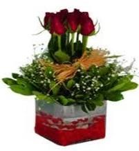Bilecik çiçekçi çiçek gönderme  7 adet mika yada cam vazoda gül tanzimi
