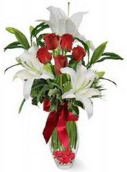 Bilecik çiçekçi çiçek siparişi vermek  5 adet kirmizi gül ve 3 kandil kazablanka