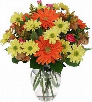 Bilecik çiçekçi hediye sevgilime hediye çiçek  vazo içerisinde karışık mevsim çiçekleri