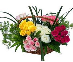 Bilecik çiçekçi ucuz çiçek gönder  35 adet rengarenk güllerden sepet tanzimi
