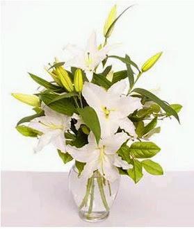Bilecik çiçekçi çiçek gönderme  2 dal cazablanca vazo çiçeği