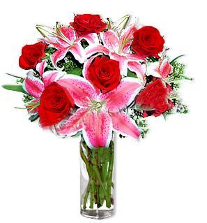 Bilecik çiçekçi çiçek yolla  1 dal cazablanca ve 6 kırmızı gül çiçeği