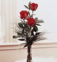 Bilecik çiçekçi internetten çiçek satışı  Vazoda 3 adet güzel gül
