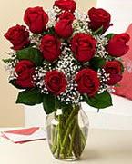 Sevgilime hediye 9 adet 1.ci kalite gül  Bilecik çiçekçi anneler günü çiçek yolla