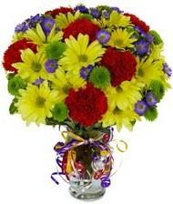 En güzel hediye karışık mevsim çiçeği  Bilecik çiçekçi hediye çiçek yolla